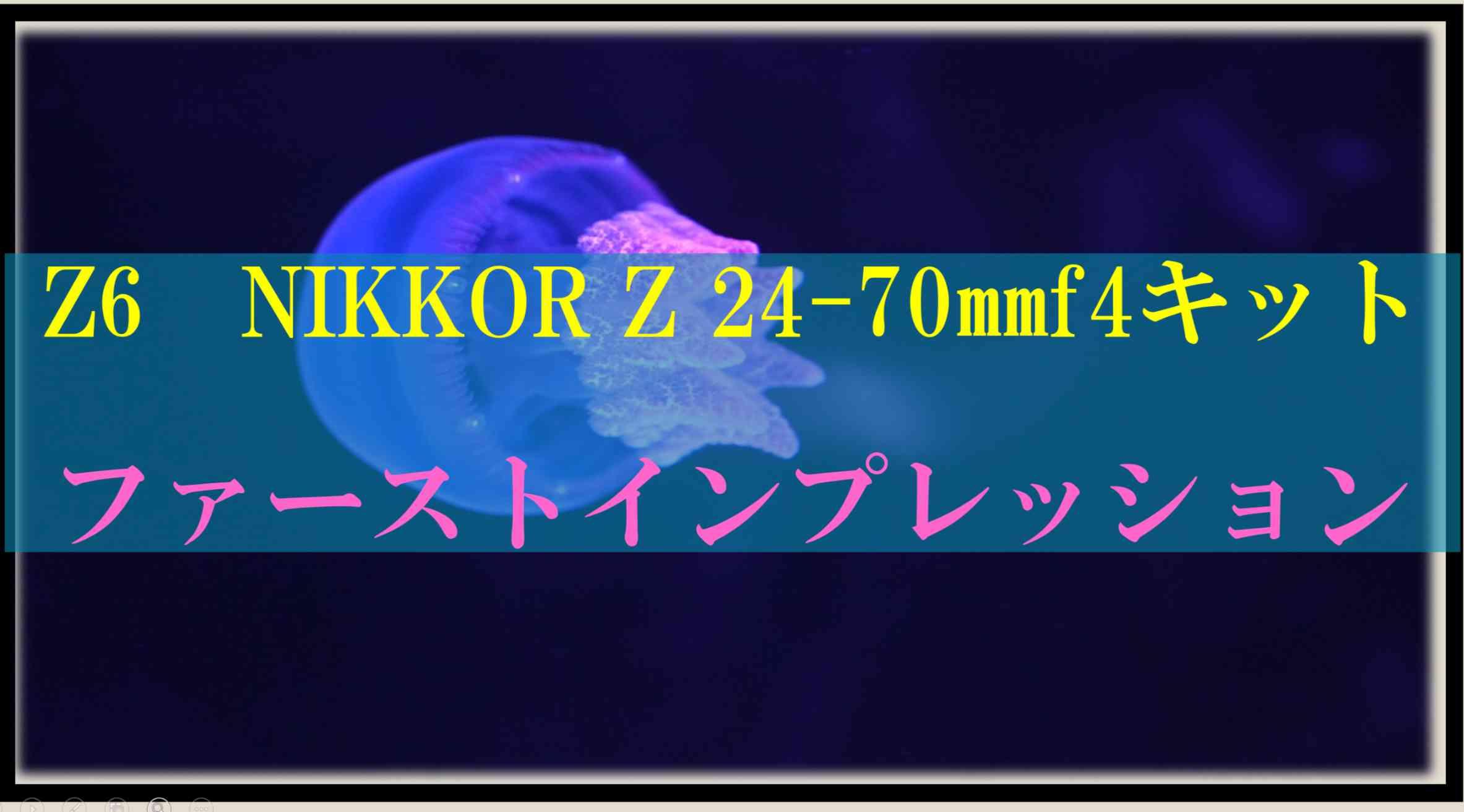 ニコン「Z6」Nikkor Z 24-70 f4 レンズキットレビュー!初撮りは暗所で難所「水族館」オールラウンダーの名は健在。