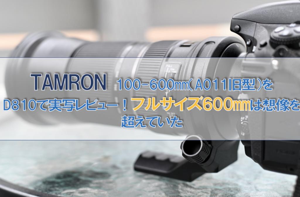 フルサイズ初心者におすすめ望遠レンズ「TAMRON 150-600mm F5-6.3 VC USD 」レビュー!